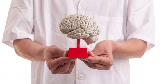 Neuroimunologia